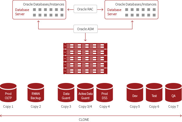 Oracle Database with SolidFire Storage